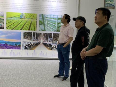 潍坊国家农业开放发展综合试验区参观考察